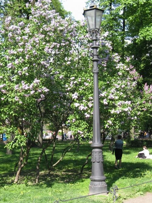 Александровский сад, фонарь