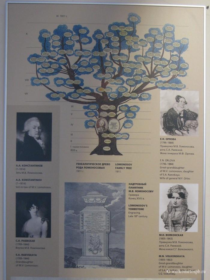 Генеалогическое древо М.В. Ломоносова