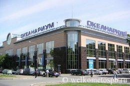 Океанариум 2020 в центре Санкт-Петербурга, цены и время работы