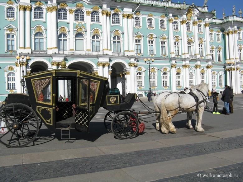 Транспорт на Дворцовой площади