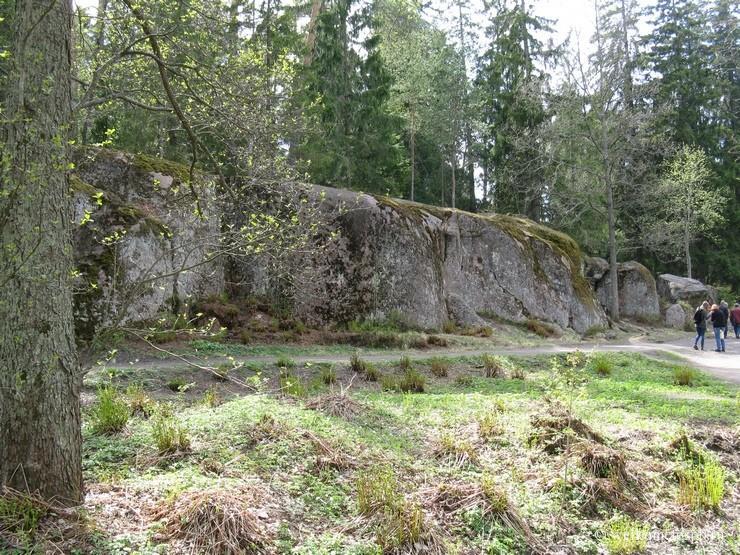 Скальные породы в парке