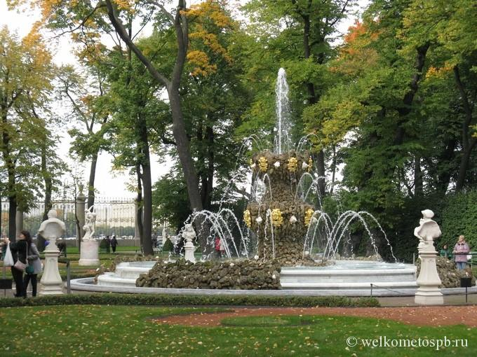 Коронный фонтан в етнем саду