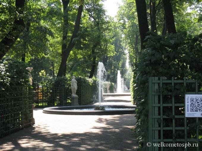 Главная аллея Летнего сада