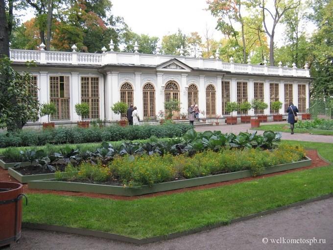 Оранжерея в Летнем саду