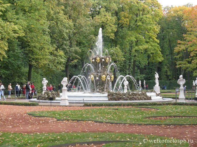 Коронный фонтан