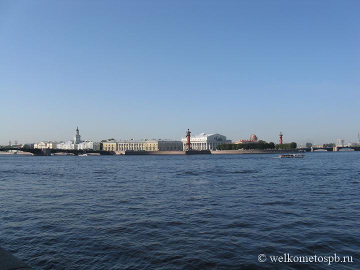 Дворцовый и Биржевой мосты